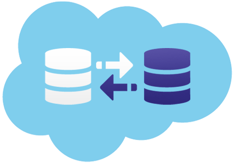 salesforce data management