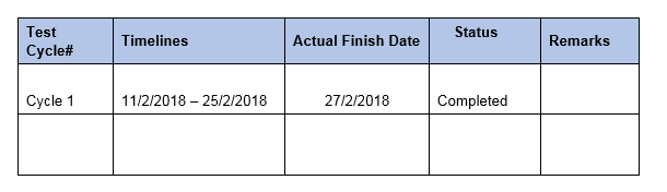 Test Summary Report - Execution Details