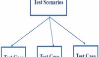 Test Scenario